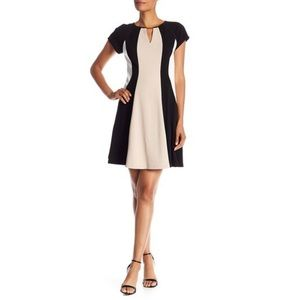 NWT! Sandra Darren Colorblock Dress